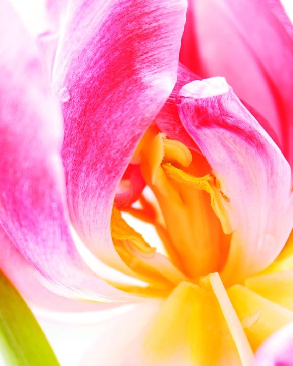 敏感肌さん集合☆敏感肌でも、安心して使える化粧水を大特集!のサムネイル画像