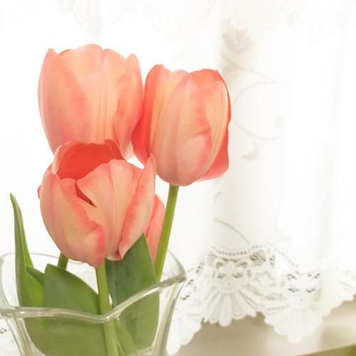 【春、メイクボックスを更新する】フランフランの激甘メイクボックスのサムネイル画像